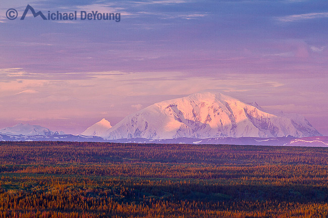 Alaska Landscape – Wrangell Mountains. Evening alpenglow view of 16,390' Mt. Blackburn of the Wrangell-St. Elias National Park rising above the Copper River Valley.