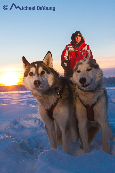 Dog musher and sled dogs at sunset.  2 speedlights with warming gels and shoots were used to separate the dogs and musher from the shadowed snow, near Willow Alaska