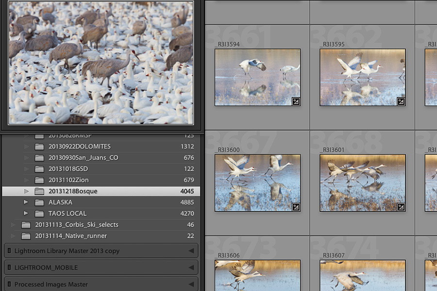 Screenshot of Lightroom showing total import from a 2 day shoot