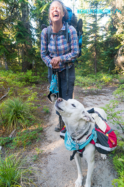 PCT in Mount Adams Wilderness, Washington.  Custard, the talking trail dog with his own wilderness permit near Indian Springs