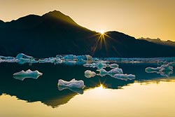 Guided Photo Trips in Alaska featuring glaciers, wildflowers, and other scenic landscape picture taking opportunitites