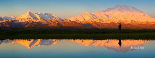 Panoramic image of traveler taking in the glorious view of Denali by a pond