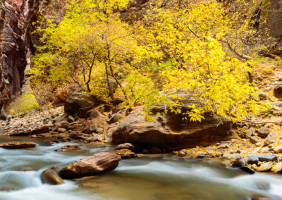 Zion-National-Park-MDeYoung-MD171102LUT_ZN044